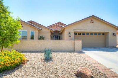 Casa Grande Single Family Home For Sale: 2421 E Fiesta Drive