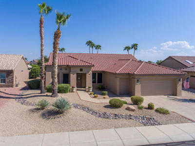 Surprise Single Family Home For Sale: 20459 N Royal Palms Court