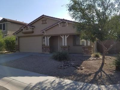 Maricopa Single Family Home For Sale: 20123 N Ryans Trail