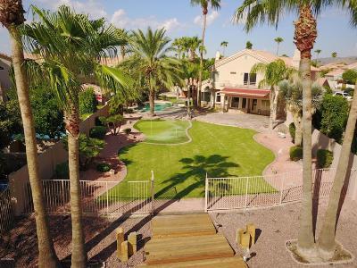Phoenix Single Family Home For Sale: 3353 E Amberwood Drive