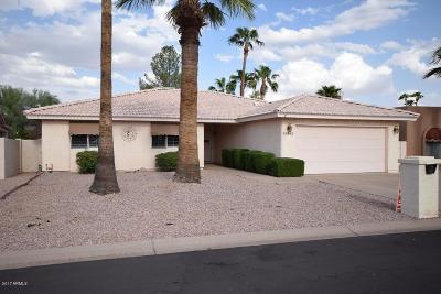 Sun Lakes Single Family Home For Sale: 25837 S Foxglenn Drive