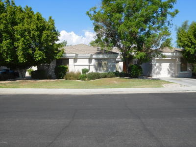Mesa Single Family Home For Sale: 1624 N Rico Circle