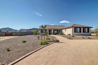 Queen Creek Single Family Home For Sale: 26409 S 202nd Street