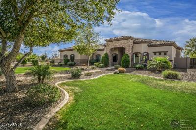 Gilbert Single Family Home For Sale: 348 S Park Grove Lane