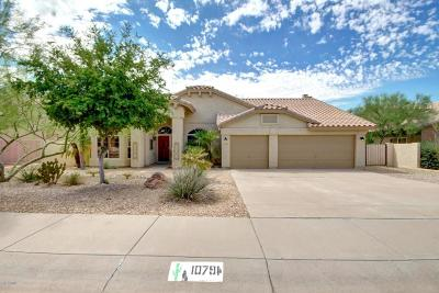 Goodyear Single Family Home For Sale: 10794 S Coolwater Drive