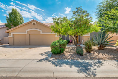 Goodyear Single Family Home For Sale: 13287 W Alvarado Drive