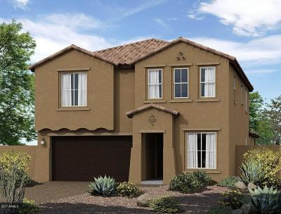 Surprise Single Family Home For Sale: 14349 W Aster Drive