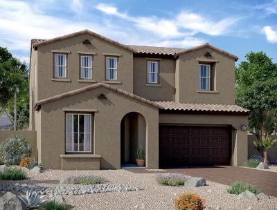 Mesa Single Family Home For Sale: 9741 E Palladium Drive