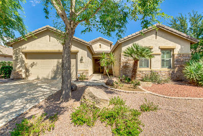 Chandler Single Family Home For Sale: 3898 E Gemini Place