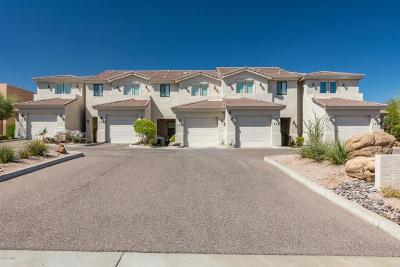 Fountain Hills Multi Family Home For Sale: 13616 Hamilton Drive #101