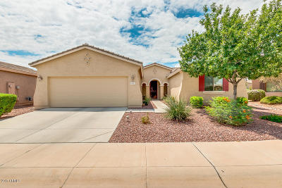 Maricopa Single Family Home For Sale: 43001 W Morning Dove Lane