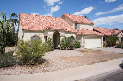 Gilbert Single Family Home For Sale: 1308 E Mineral Road