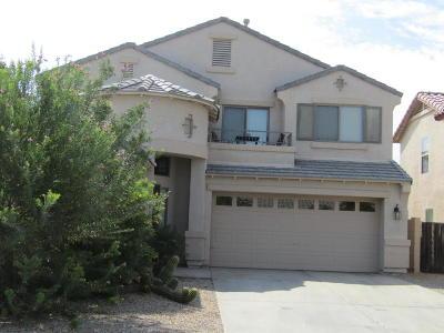 Maricopa Single Family Home For Sale: 17552 N Gatun Avenue