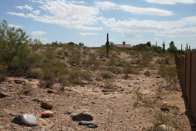 Peoria Residential Lots & Land For Sale: 10459 W Pinnacle Peak Road