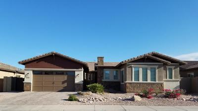 Gilbert Single Family Home For Sale: 3522 E Tiffany Way