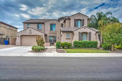 Mesa Single Family Home For Sale: 11043 E Ravenna Avenue