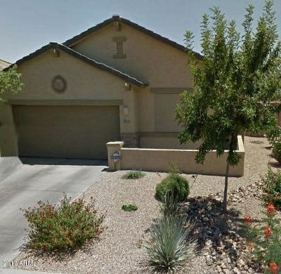 Tolleson Single Family Home For Sale: 10129 W Chipman Road