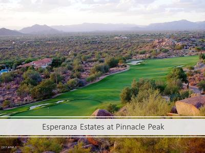 Scottsdale Residential Lots & Land For Sale: 27354 N 95th Street