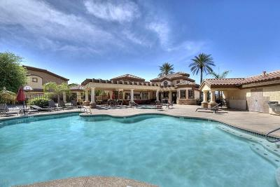 Apartment For Sale: 10136 E Southern Avenue #3074
