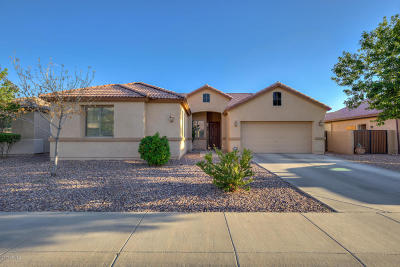 Casa Grande Single Family Home For Sale: 1565 E Jardin Place