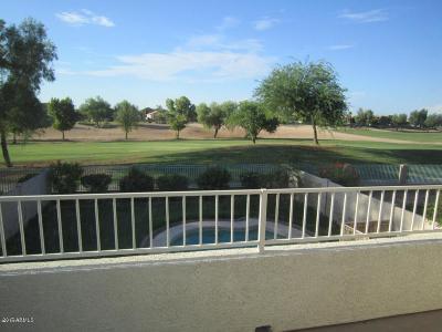 Goodyear Rental For Rent: 13646 W Desert Flower Drive