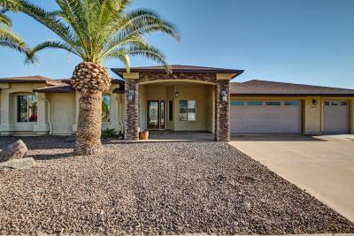 Sun City Single Family Home For Sale: 9505 W Hidden Valley Circle N