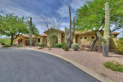 Scottsdale Single Family Home For Sale: 11003 E Balancing Rock Road