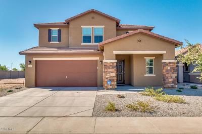 Maricopa Single Family Home For Sale: 40869 W Mary Lou Drive
