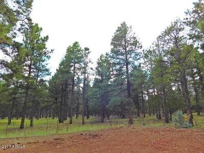 Coconino County, Yavapai County Residential Lots & Land For Sale: 3729 W Cohonina Trail