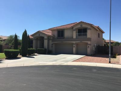 Litchfield Park Single Family Home For Sale: 5322 N Oro Vista Court