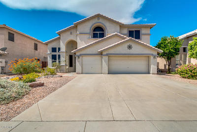 Phoenix Single Family Home For Sale: 22026 N 33rd Drive