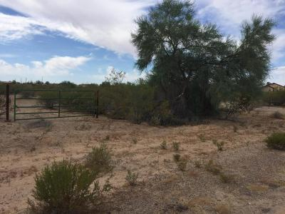 Queen Creek AZ Residential Lots & Land For Sale: $170,000