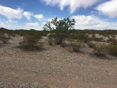 Queen Creek AZ Residential Lots & Land For Sale: $290,000