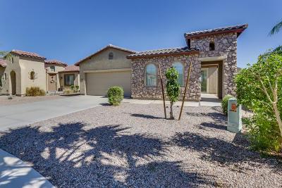 Maricopa Single Family Home For Sale: 19107 N Goleta Street