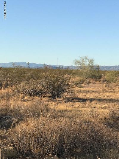Wittmann Residential Lots & Land For Sale: 30705 N 255th Avenue
