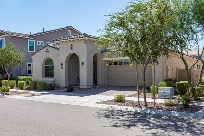 Mesa Single Family Home For Sale: 10321 E Kinetic Drive