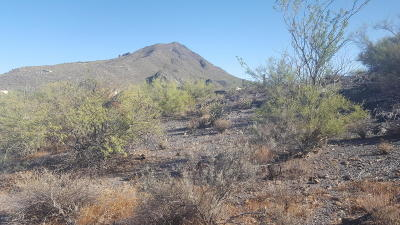 Residential Lots & Land For Sale: 378xx N Hidden Valley Drive