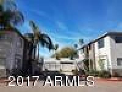Phoenix Rental For Rent: 3208 E Flower Street #207