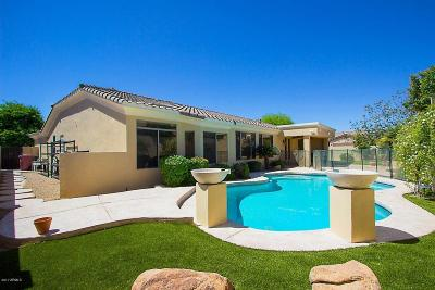 Scottsdale Single Family Home For Sale: 7740 E Sands Drive