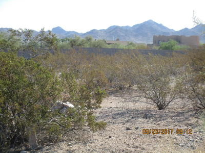 Goodyear Residential Lots & Land For Sale: 11093 S Santa Columbia Drive