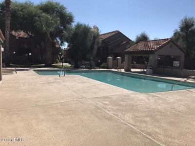 Tempe  Apartment For Sale: 925 N College Avenue #G126