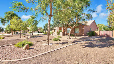Queen Creek Single Family Home For Sale: 21104 S 222nd Street