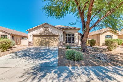 Maricopa Single Family Home For Sale: 44126 W Buckhorn Trail