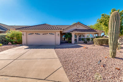 Mesa Single Family Home For Sale: 6005 E Selkirk Circle