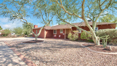 Scottsdale Single Family Home For Sale: 8159 E Palm Lane