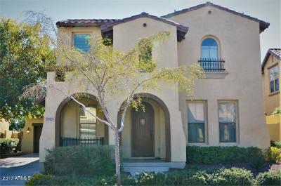 Buckeye Single Family Home For Sale: 20425 W Terrace Lane