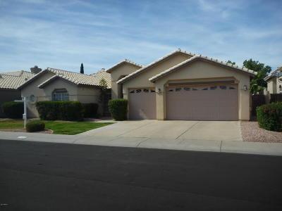 Scottsdale Single Family Home For Sale: 8916 E Camino Del Santo