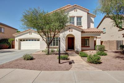 Chandler Single Family Home For Sale: 4088 E Peach Tree Drive