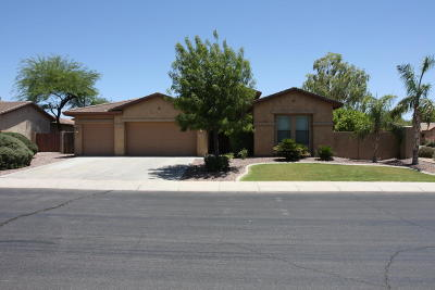 Chandler Single Family Home For Sale: 1347 S Holguin Court