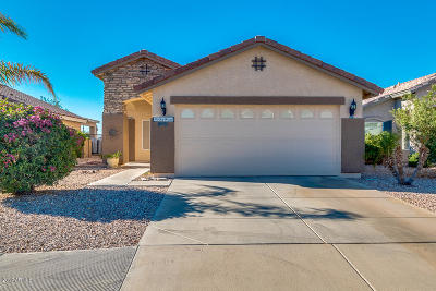 Avondale, Buckeye, Goodyear, Litchfield Park, Surprise Single Family Home For Sale: 23077 W Lasso Lane